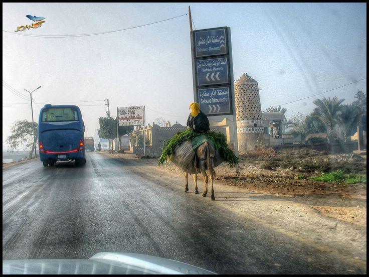 https://flic.kr/p/Gz8bc9 | 7002 - The Road IV | Giza, Cairo, Egypt
