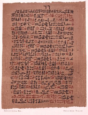 The Most Extensive Record of Ancient Egyptian Medicine (Circa 1,550 BCE) : From Cave Paintings to the Internet