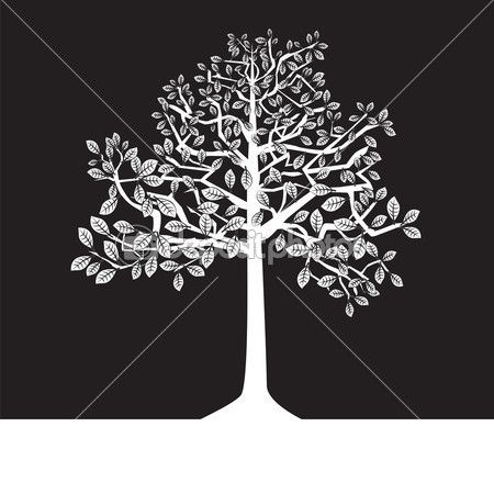 20 best images about mural bebesukos on pinterest for Black and white tree mural