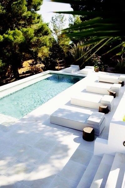 Sleek inground pool and modern landscaping