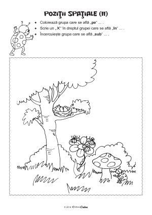 Fise de Lucru (Editura Caba)