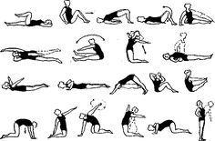 La gymnastique médicale et les exercices dans le traitement de l'arthrose du genou