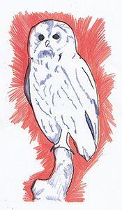 An Owl Print using layered printing
