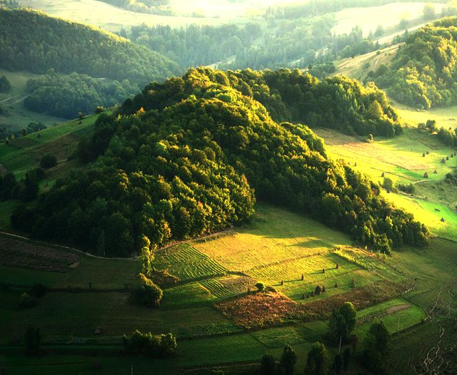 Fancy - The Carpathians Mountains @ Romania