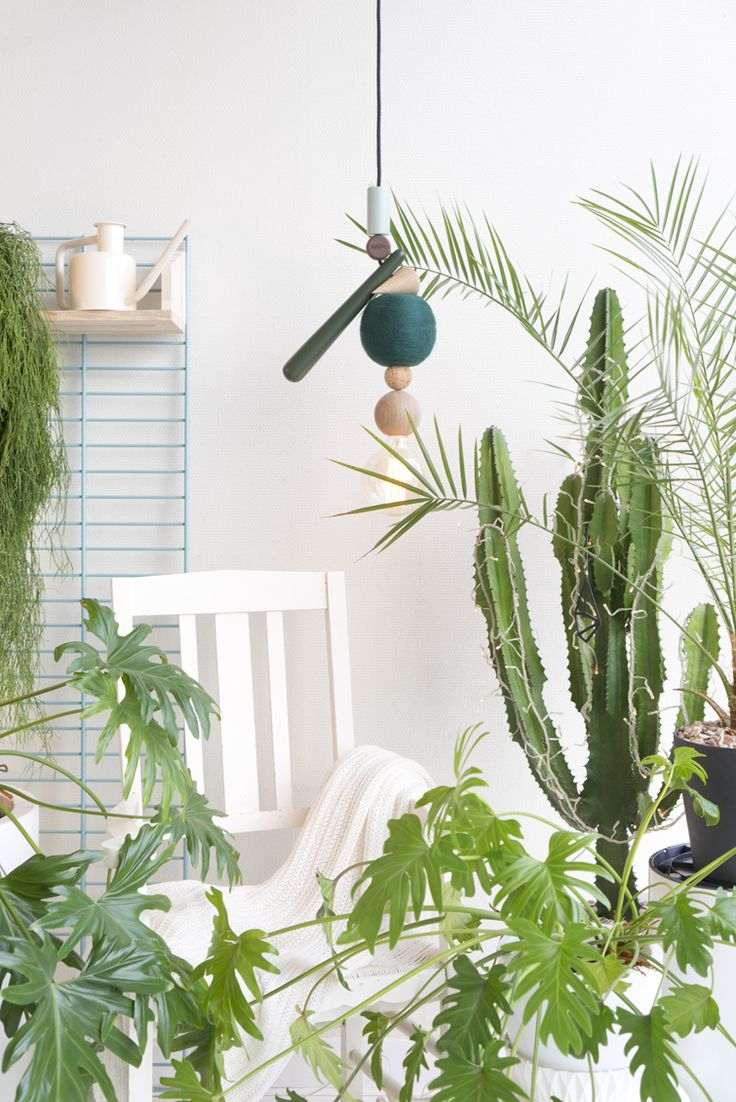 JOELIX.com | Urban Jungle Bloggers: Plants & Light with HAENG