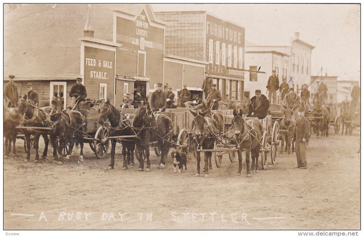 """RP: Wagons on Main Street [""""A Busy Day""""] , STETTLER , Alberta , Canada , PU-1908"""