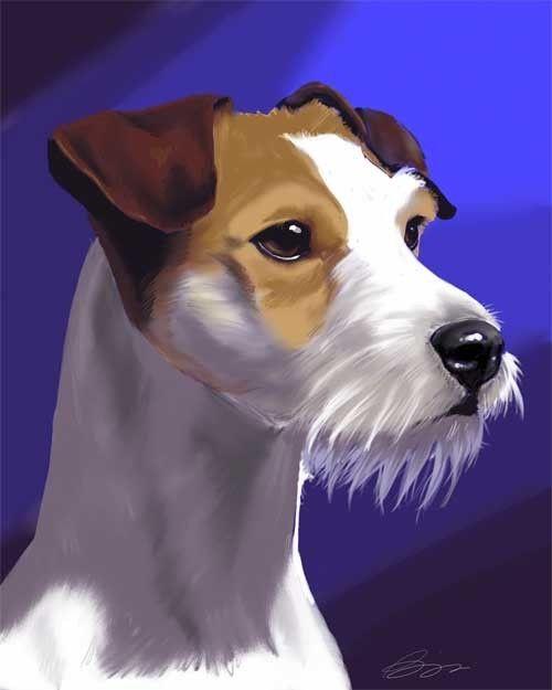 Jack Russell terrier print, by B. Rubenacker, Michigan