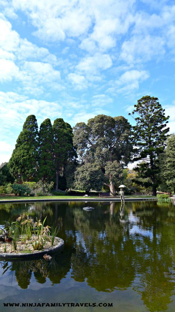 St Kilda Botanical Gardens  Melbourne day out with Kids