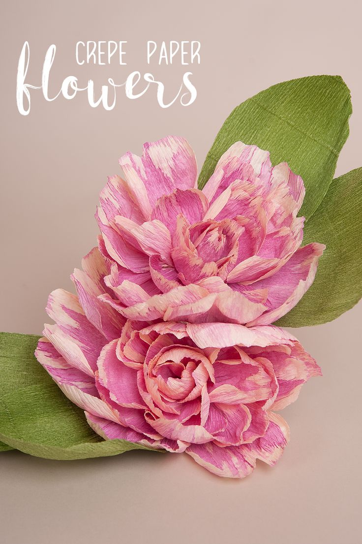 407 best crepe paper flowers images on pinterest crepe paper diy crepe paper flowers by dunne with style dunnewithstylediy dhlflorist Choice Image
