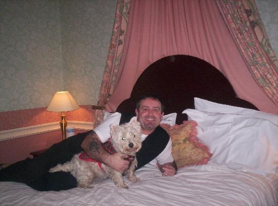 11) Dumfries, Scotland (Trip Advisor image of Hetland Hall Hotel, Dumfries)