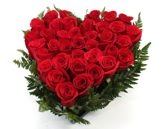 Corazón de Rosas. 40 rosas frescas en forma de corazón.