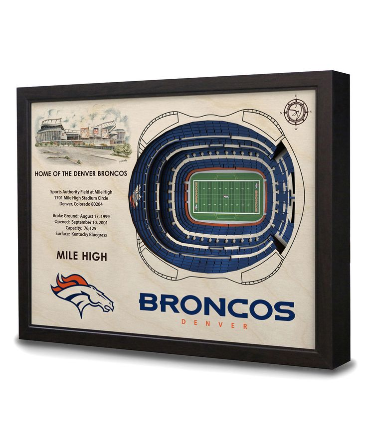 Look at this Denver Broncos Sports Authority Field at Mile High Wall Art on #zulily today!