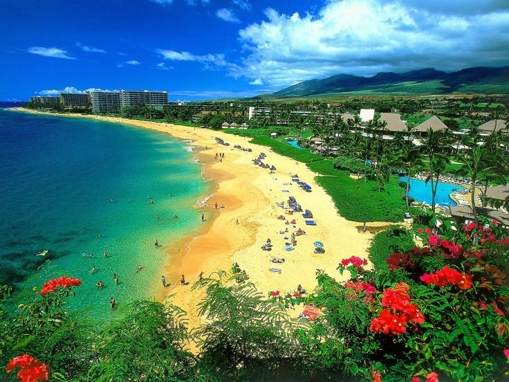 Adventages of Booking Cheap Hawaii Vacation Packages hawaii