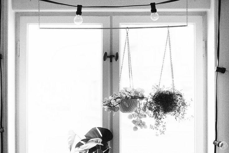hängande blommor hejregina | by hejregina