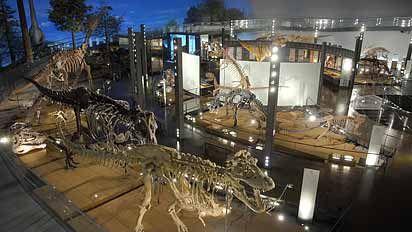「恐竜の世界」ゾーン Fukui Japan