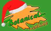 Botanical-Online - Que es el colesterol ?