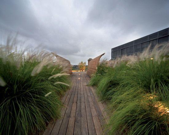 Lampenputzergras Dachterrasse gestalten Holz Dielenboden