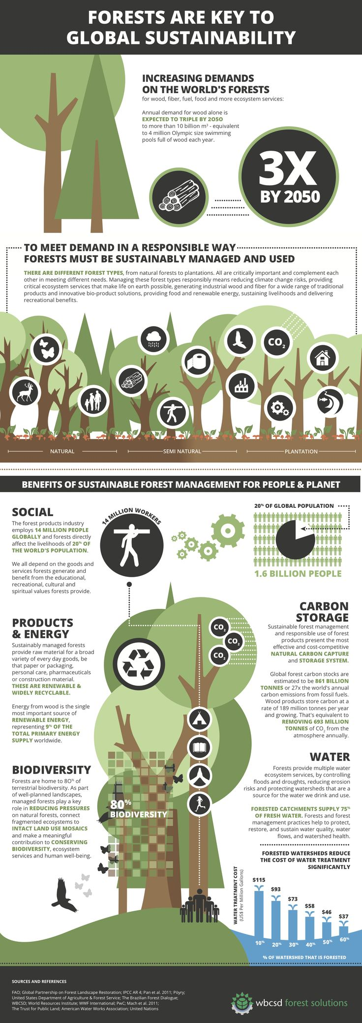 Discover how it is possible to sustainably manage a forest for the benefit of all.  #sustainability #thenavigatorcompany #paper #company #forests #nature #spring