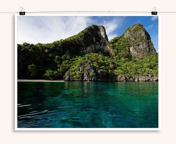 Online Writing Lab - free response essay island biogeography