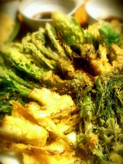 たらの芽、うるい、行者にんにく、こごめ、おかひじきなどなど - 132件のもぐもぐ - 山菜天ぷら by miyako8940