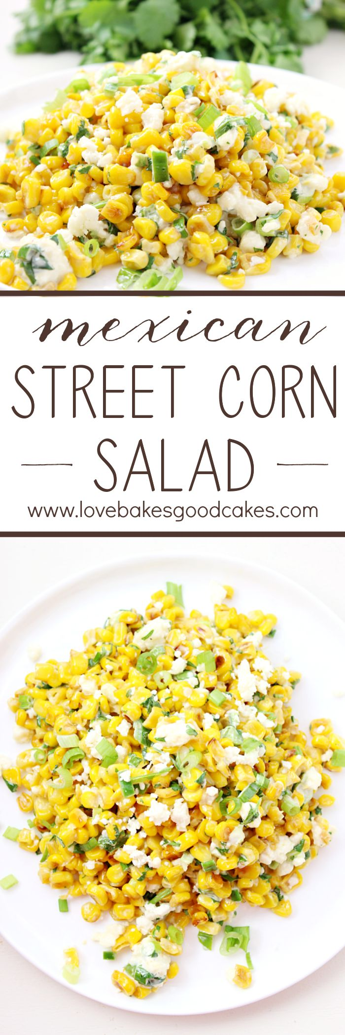 All of the flavor of Elote in a delicious and easy Mexican Street Corn Salad! This is sure to become a favorite side dish with any Mexican meal! Great for summer fresh corn!: