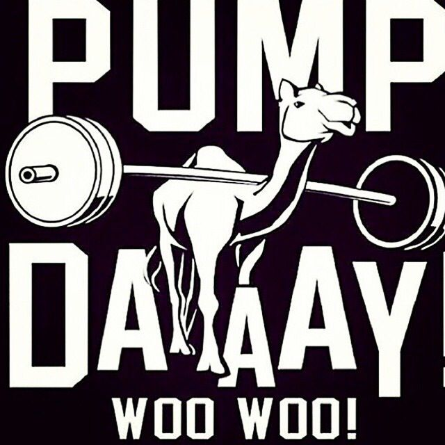 Pump day! Woo Woo! #Humour #Fitness   Come get your fitness on at Powerhouse Gym in West Bloomfield, MI! Just call (248) 539-3370 or visit our website powerhousegym.com/welcome-west-bloomfield-powerhouse-i-41.html for more information!
