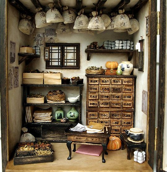 Traditional oriental Herbal Medicine Shop- handmade Dollhouse Miniatures. DollhouseAra. Etsy