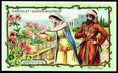 Chocolat Guérin-Boutron. Caucase.