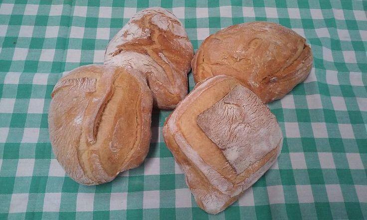 Ciabattine di grano duro di Sicilia: solo farine molite a pietra dei Molini del Ponte di Castelvetrano