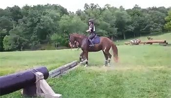 You want me to do what over where? This is literally going to be Lady the first time we actually get over a jump.