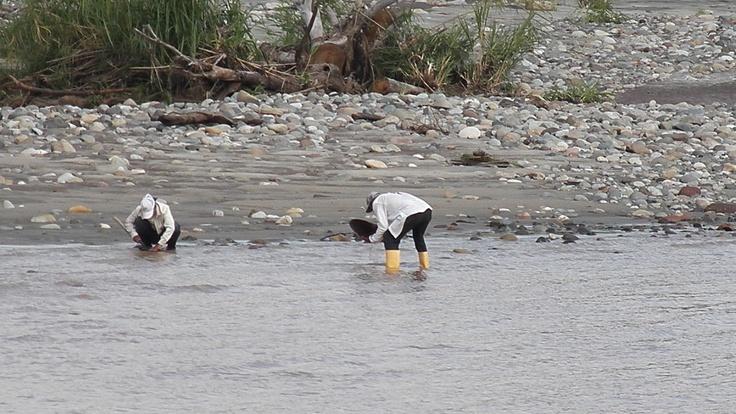cazadores de oro rio magdalena chaparral tolima