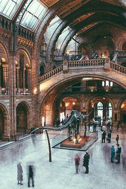 atasteofblue:  Natural History Museum, London, England  photo via alien