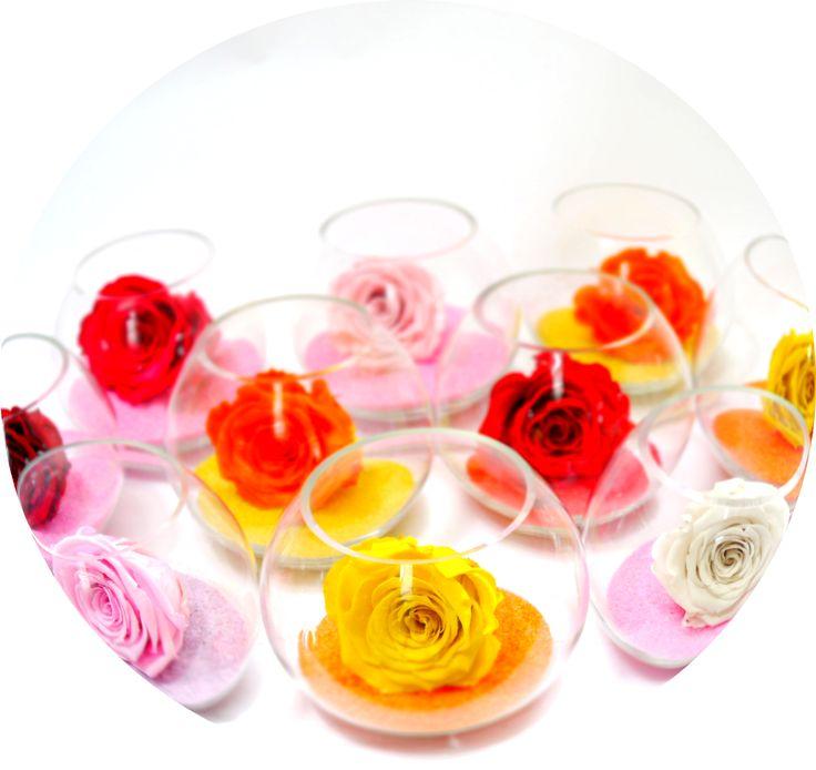 Roses stabilisées multicolore