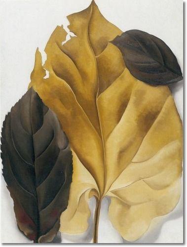 georgia o'keefe painting of brown leaves   -art-artist-paintings-prints-by-georgia-okeeffe-brown-and-tan-leaves ...