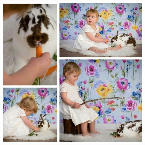 Easter bunny rabbit photoshoot