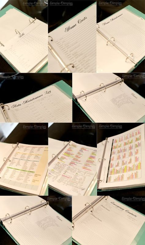 Organization Binders...with downloadable files. File 1 - Family: calendar/dates, travel, school, shopping, File 2 - Finances: bills, taxes, home/auto, contacts, File 3 - Fun: family plans, home projects, craft projects