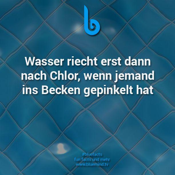 #bluefacts #fakten #facts #wissen #weisheit #zitat #quote #zitate #unnützeswissen