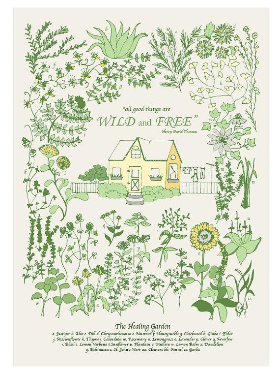 Healing Garden by StefaniAustin on Etsy, $17.00