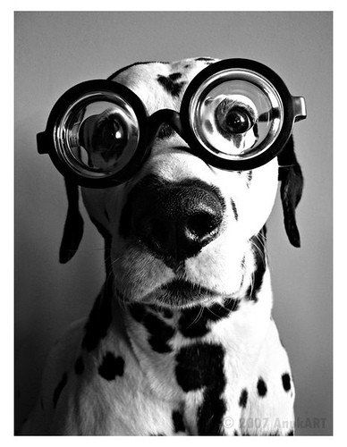 studied too hard! needs glasses