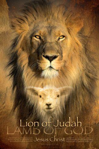 Judah Lion Posters at AllPosters.com