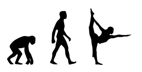 Yoga and the evolution of man, woman, homo sapiens, funny, humor