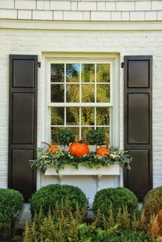 pumpkins in the window box - this would look awesome in my boxes on the deck railings surrounding the pool
