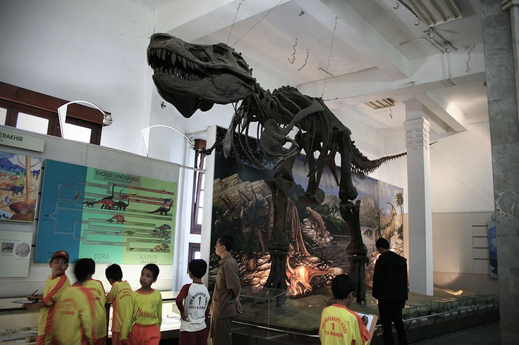 Without anytime machine, these enthusiasts young school children are stepping back into the Jurassic era in the Geological Museum.