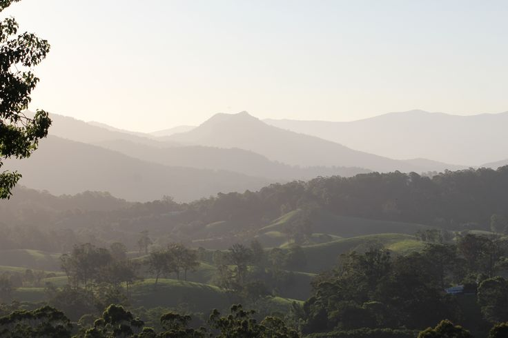 L1M1AP1: Mountain range, Murwillumbah. no cropping or other adjustments. Shutter Speed: 1/350 Aperture: f9 ISO: 100 Lens: EF 100mm f2.8 Macro USM Camera: Canon 550D