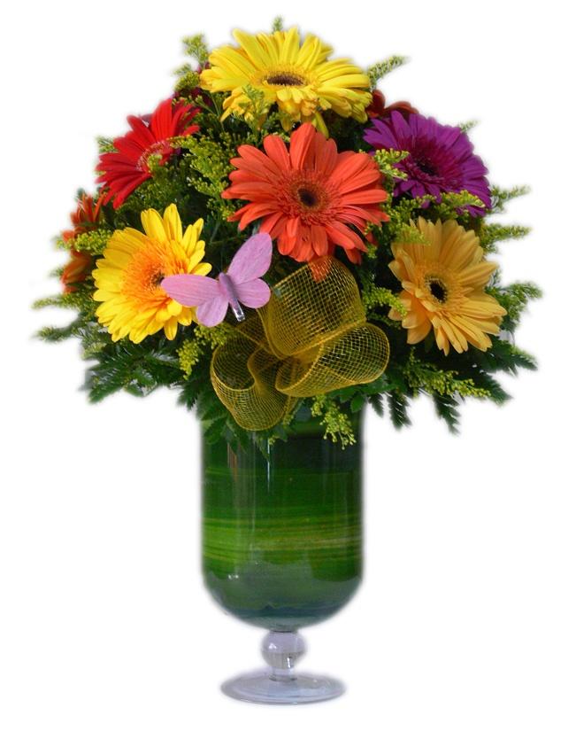 Gerberitas    10 Coloridas Gerberas en un lindo jarrón de vidrio. Ideal para decorar ese rinconcito de tu casa.