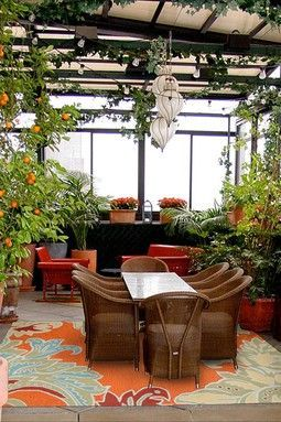 plants for sunrooms | sunroom! I absolutely love it. With all the plants its just my style!!