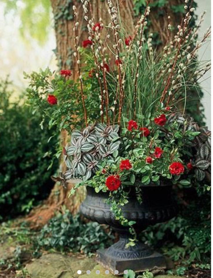 You can always enhance your container plants with dried for Large garden pot designs