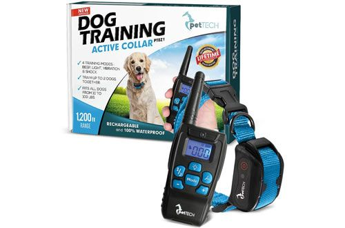 Top 10 Best Small And Large Dog Training Collars Reviews In 2020