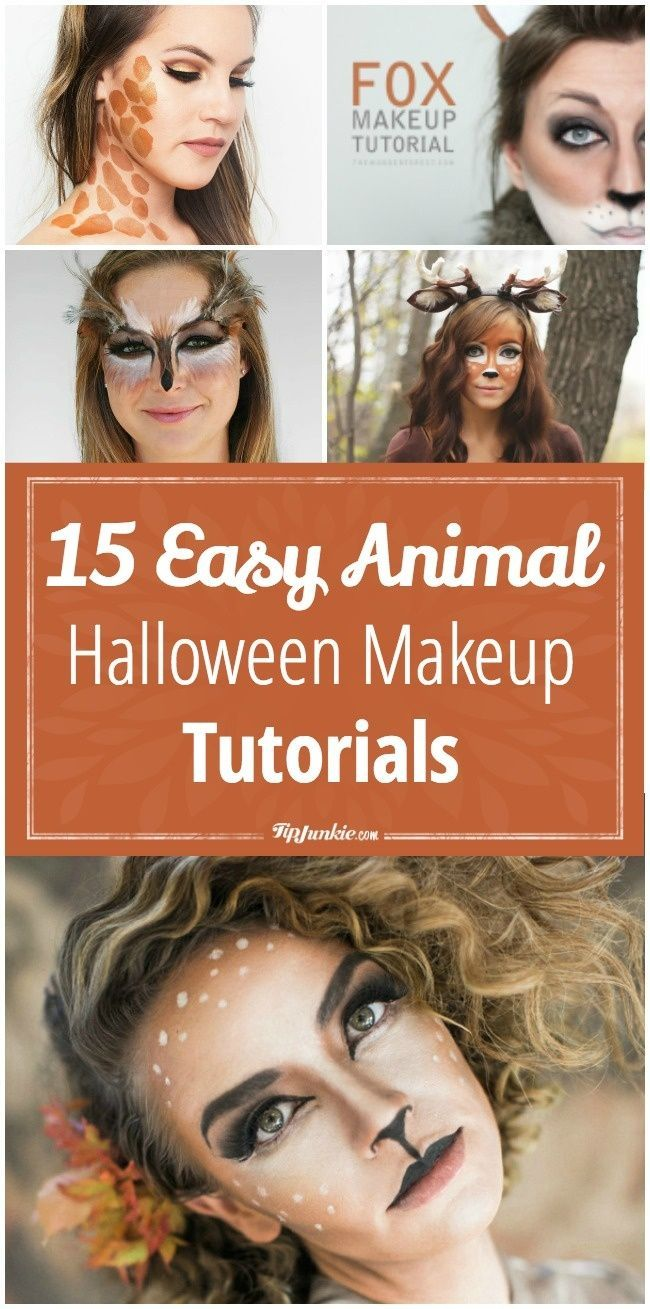15 Easy Animal Halloween Makeup Tutorials - Tip Junkie                                                                                                                                                                                 More