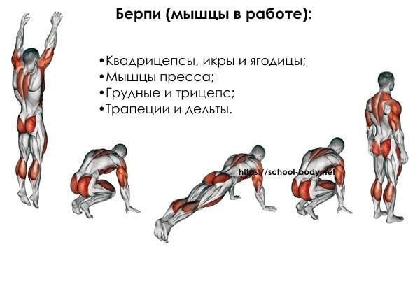 Берпи упражнения